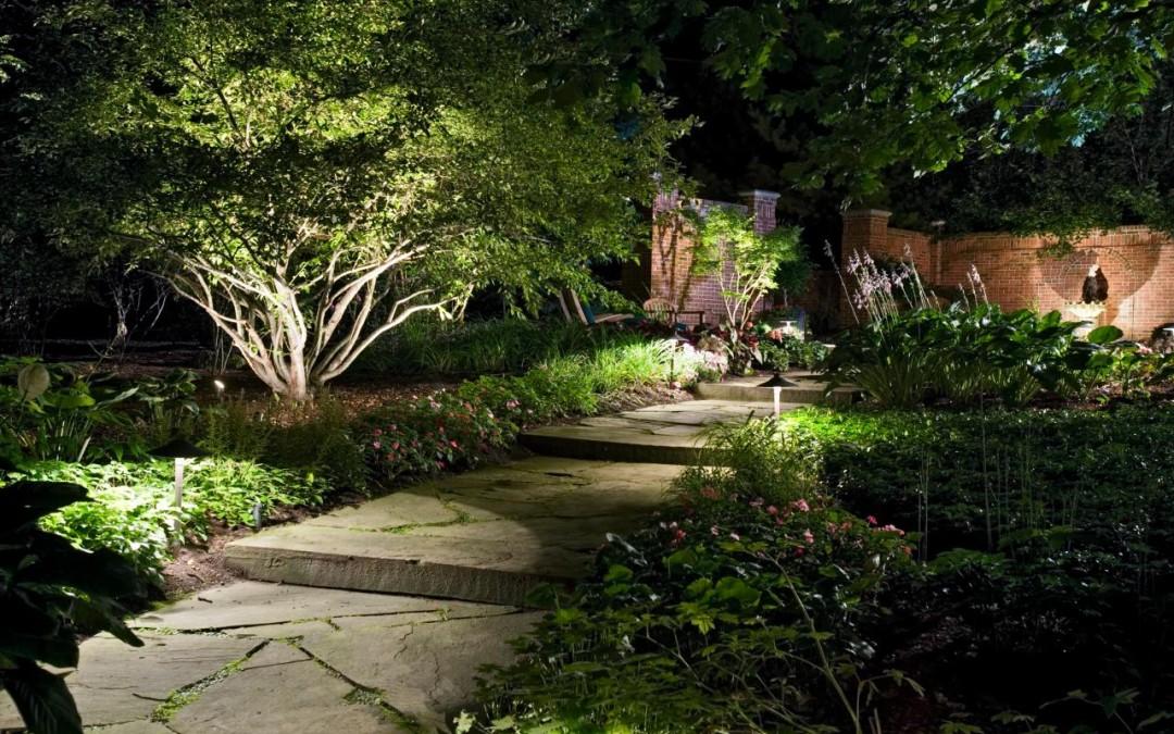 Low-voltage Lit Verdant Garden Path