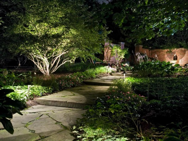 Low-voltage Lit Verdant Garden Path