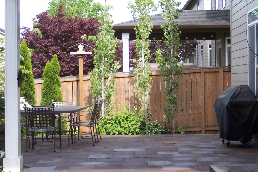 Paver patio with table and barbecue