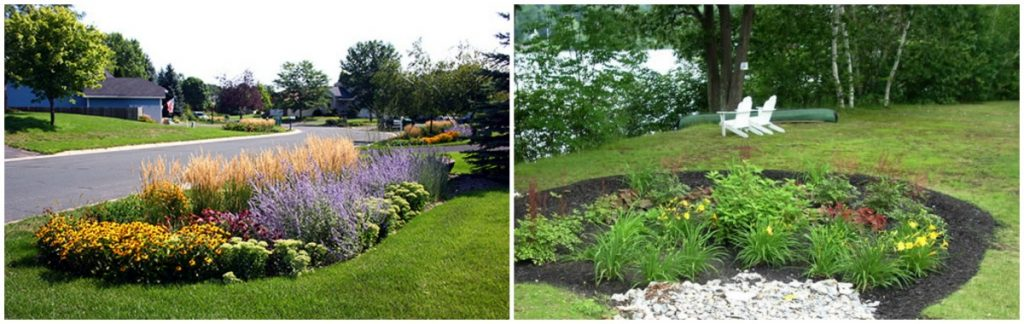 Rain garden in neighborhood settings