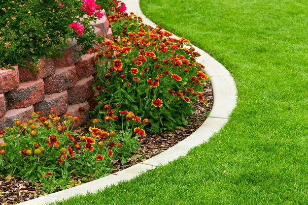 Landscape Services for Property Managers