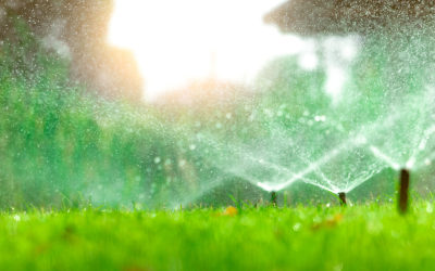 The Benefits of an Automatic Irrigation System